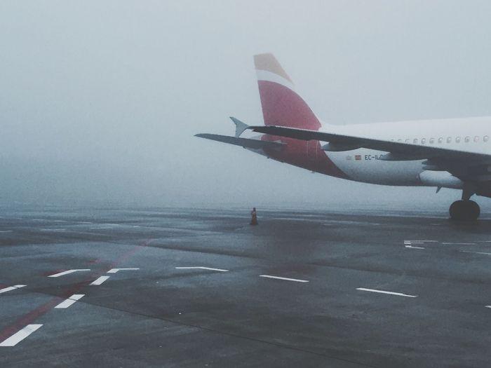 airplane, fog,