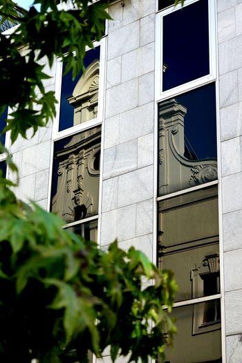 Reflection Düsseldorf 2015 Düsseldorf ♡ Reflection Reflexions Reflection_collection Window Windows Building