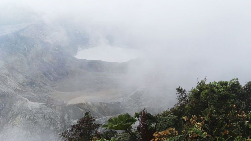 Mountain Tree Nature Fog Beauty In Nature Landscape Forest Scenics No People Day Outdoors Volcano Landscape Volcanos