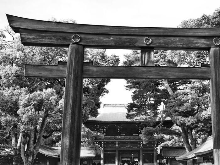 Tori, entrance of the Meiji-Jingu shrine in Tokyo, Japan. Japan Tokyo Meiji-Jingu Tori Shrine Street Photography X100t X100gang Fujifeed Fujifilm Fujifilm_xseries Black And White Monochrome Photography