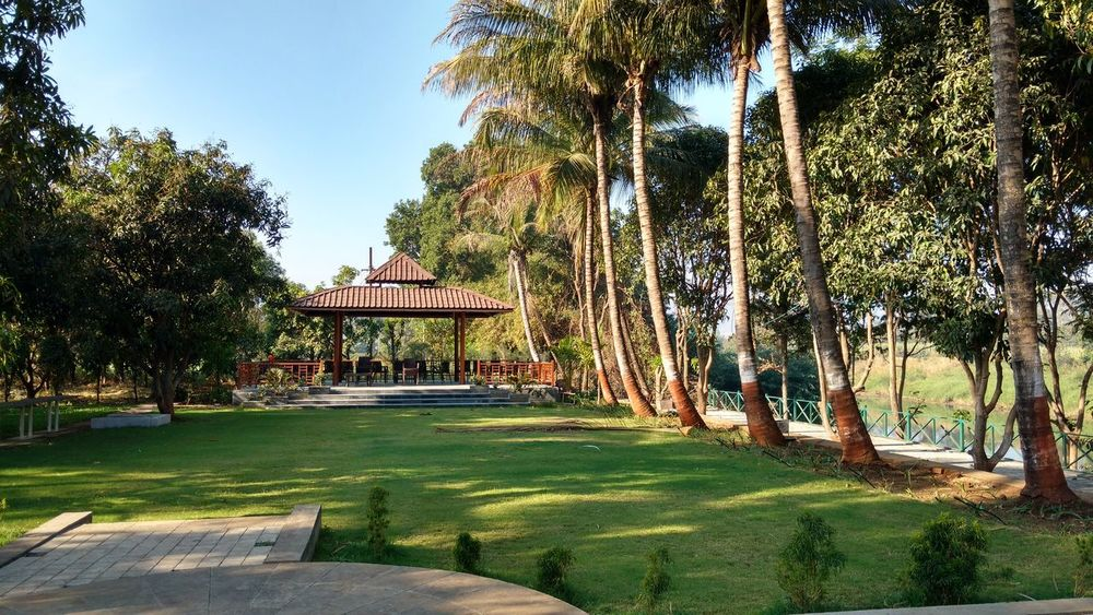 Scenery Scenic View Coconut Trees Riverside NatureAndStructure Palmwoods Greenery Relaxing View Natureand Miles Away Beauty In Nature The Great Outdoors - 2016 EyeEm Awards Puneclickarts Original No Filter