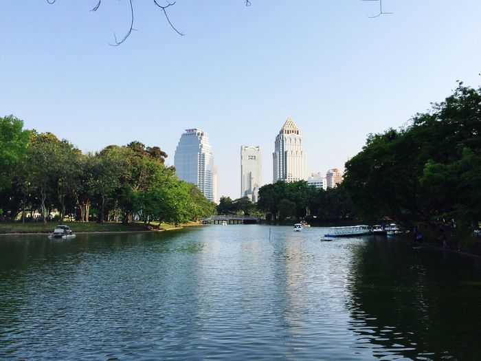Lumpini Park Bangkok Thailand Water Tree Architecture Built Structure Building Exterior Clear Sky Reflection City Growth Sky River Waterfront Outdoors Day No People Nature Park Relaxing Relaxation Relaxing Moments
