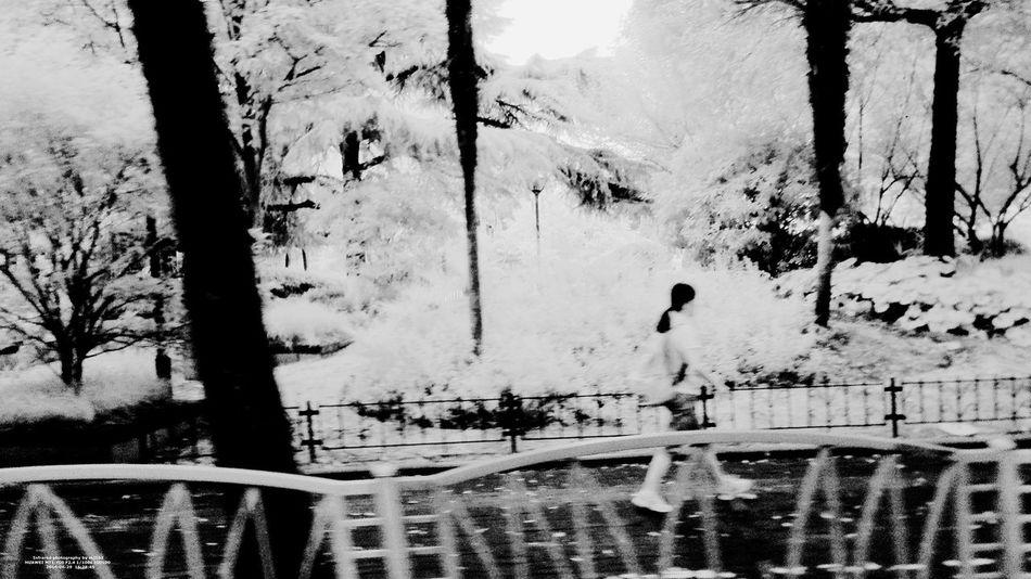 IR Looking Outside The Window Road Shanghai, China Art B&w Photography Bus Hongqiao Train Station Infrared Photo Infrared Photography Outside The Window. People Photography Phone Photography PhonePhotography Rain Window Steel