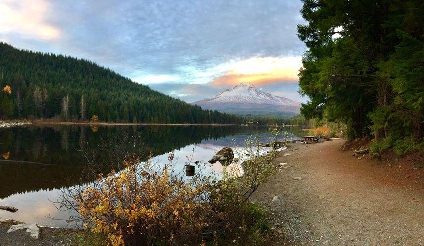 Mt Hood Oregon Trillium Lake Reflection Scenics Beauty In Nature Tranquil Scene Lake Landscape