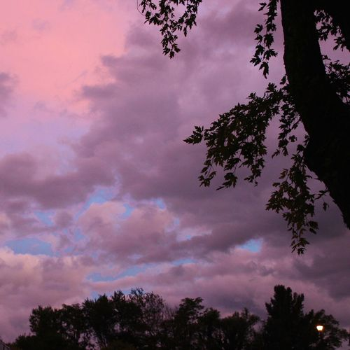 Unusual sky last night after sunset 😳 Cloud - Sky Tree Silhouette Low Angle View Mulicolors Scenics Beauty In Nature From My Point Of View
