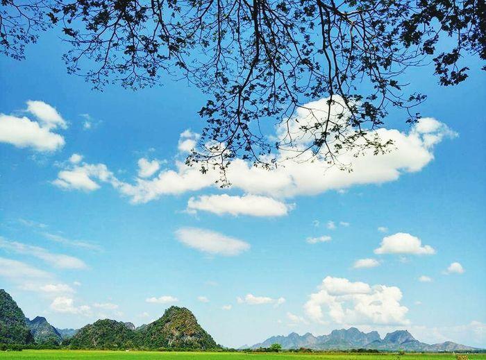 ဆႏၵန္လိႈက္ဂူ အျပင္ဘက္... Sky No People Tree Outdoors Nature Beauty In Nature Day