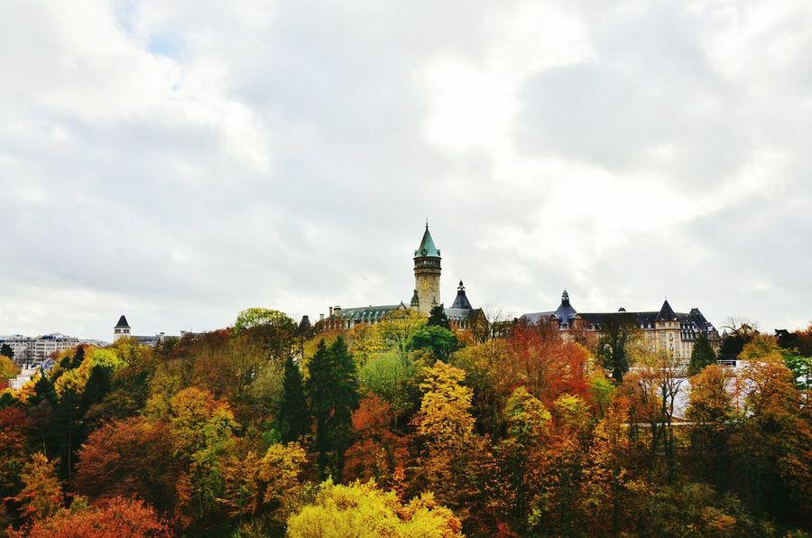 Castle Automne