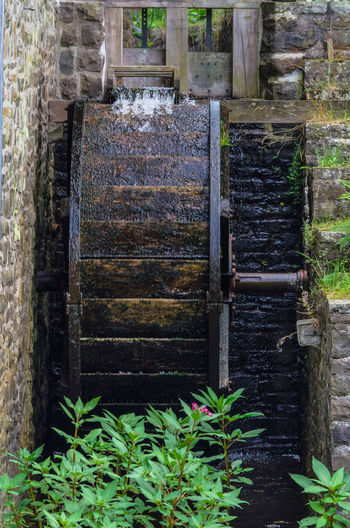 Reconstituted and restored mill wheel of an old water mill in Germany. Abandoned Architecture Built Structure Day Door Entrance Green Color Growth Leaf Nature No People Old Outdoors Plant Plant Part Solid Staircase Wall - Building Feature Water Wood - Material