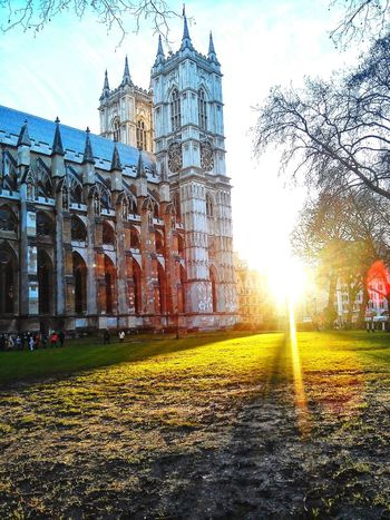 A ray of hope is never too far..... Feeling Thankful At The Park Free Open Edit Sunshine Londonthroughmycam Church Yard Westminister Abbey EyeEm Nature Lover
