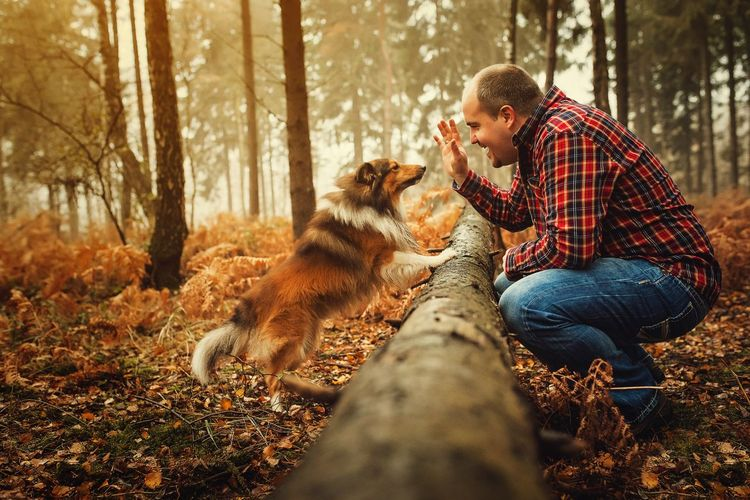 Side view of man with dog in forest during foggy weather
