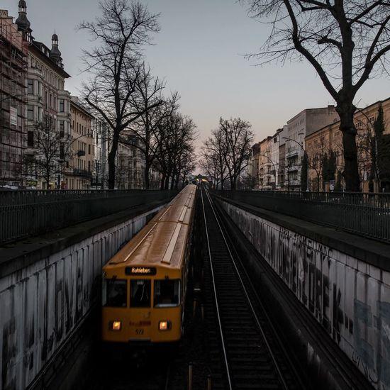 Railroad tracks amidst bare trees against sky