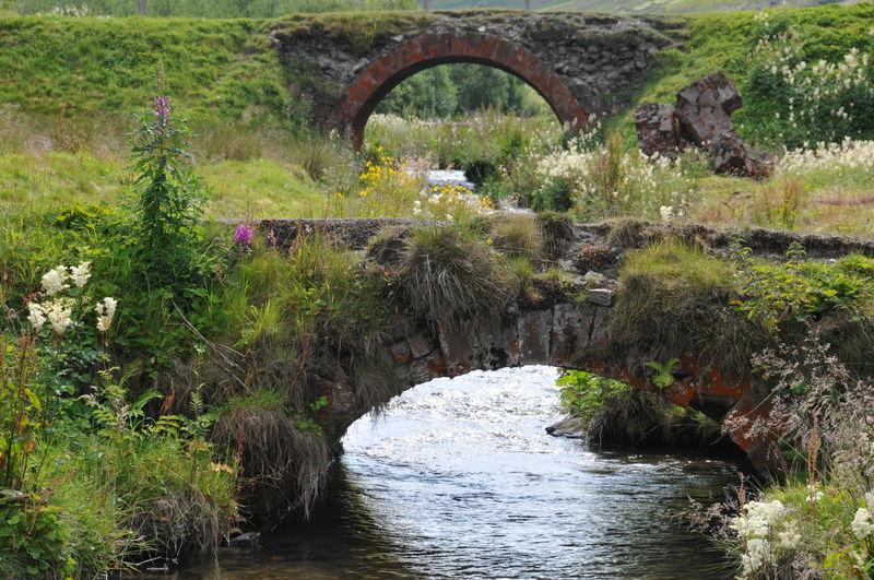 The old bridges