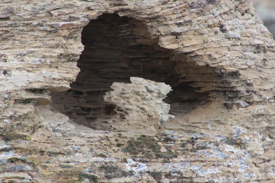 Wyoming Rock Formation Lichen On A Rock Lichen Rock Erosion Effects Distant Background Hole Through Rock Illusion