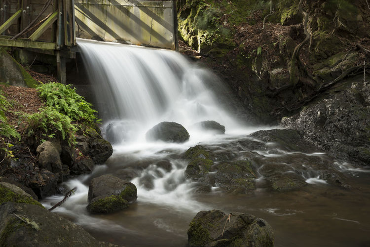 Man made spillway Scenics - Nature Motion Waterfall Flowing Water Long Exposure Blurred Motion Water Rock Tree Forest Beauty In Nature Nature Flowing Rock - Object No People Environment Moss Land Power In Nature Outdoors Stream - Flowing Water Falling Water