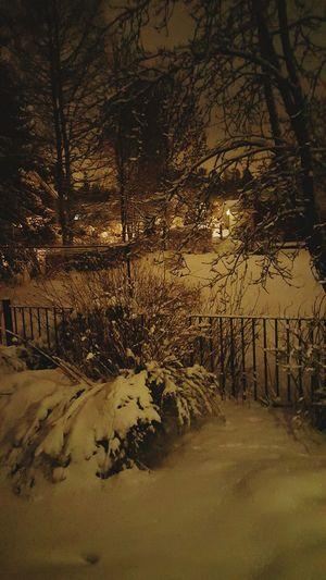 Winter Light In The Dark Light In The Darkness