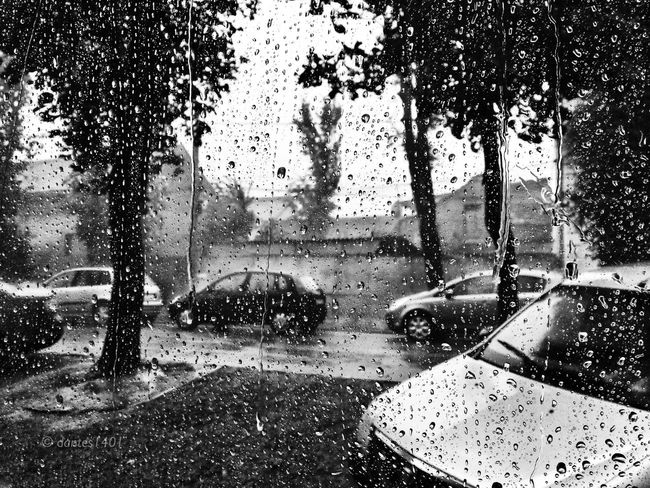 Heavy rain, today... Made In Romania Streetphotography Blackandwhite Streetphoto_bw EyeEm Best Shots Taking Photos Monochrome Eye4photography  Enjoying Life Reflected Glory
