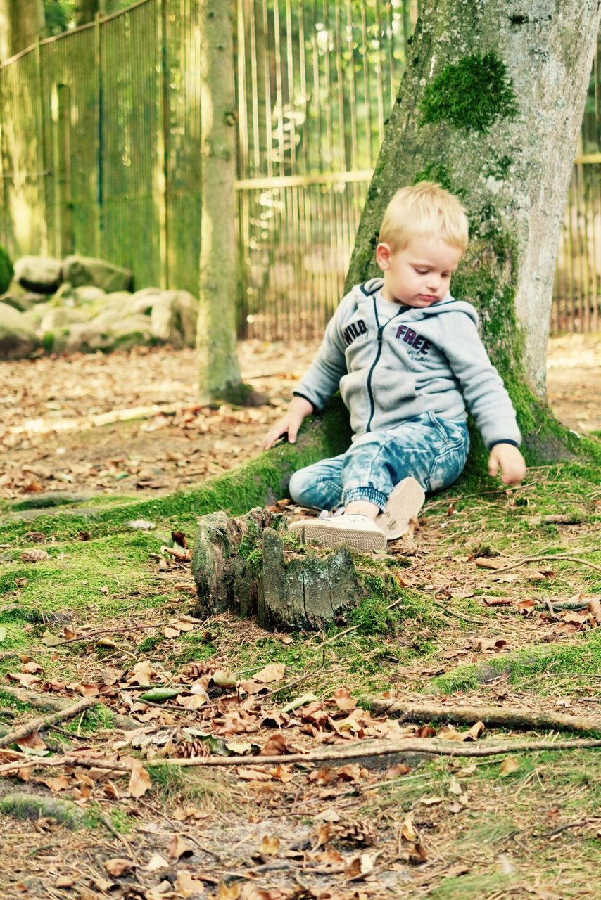 childhood, one person, full length, casual clothing, real people, cute, boys, tree, playing, leisure activity, day, tree trunk, lifestyles, animal themes, outdoors, blond hair, smiling, nature, one boy only, mammal, people