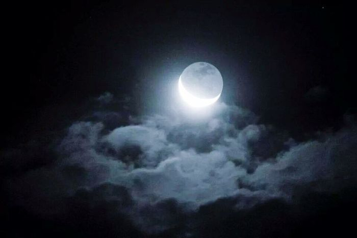 Moonlight Moon Sky Sky_collection Taking Photos Eye4photography  Streetphotography Spettacular View Wildlife Nature