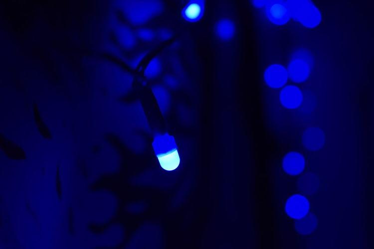 lights and