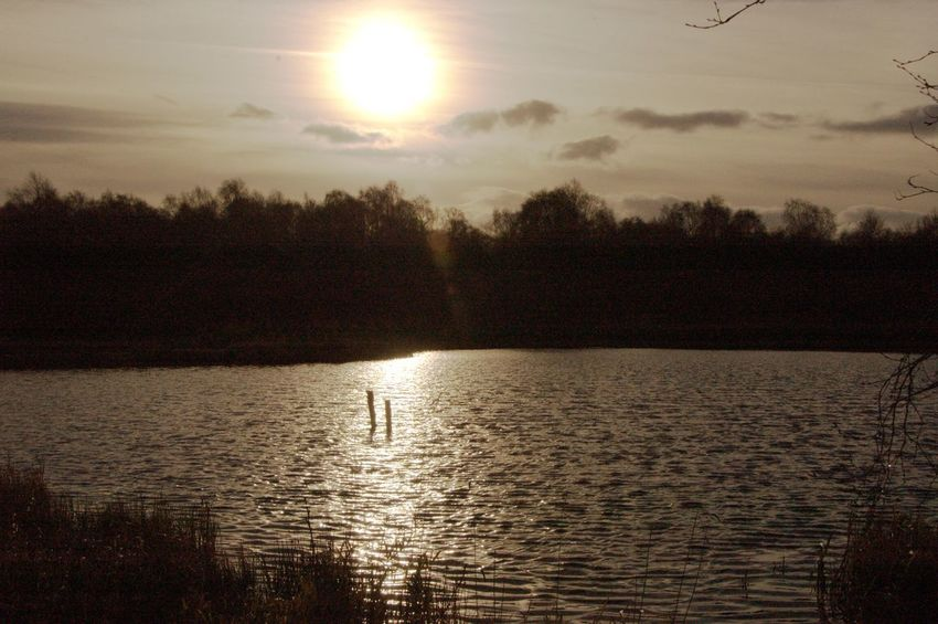 Sunset Water Beauty In Nature Nature Silhouette Scenics Sun
