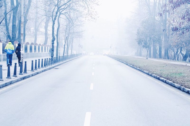 A foggy day in Sofia. Cold Temperature Winter Tree Bare Tree The Way Forward Road Nature Day City Fog Autumn Outdoors Street