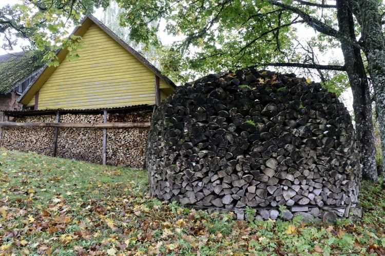 Estonia Preparing For Winter Autumn Colours Countryside Farm Firewood Wood Stack Yellow Building