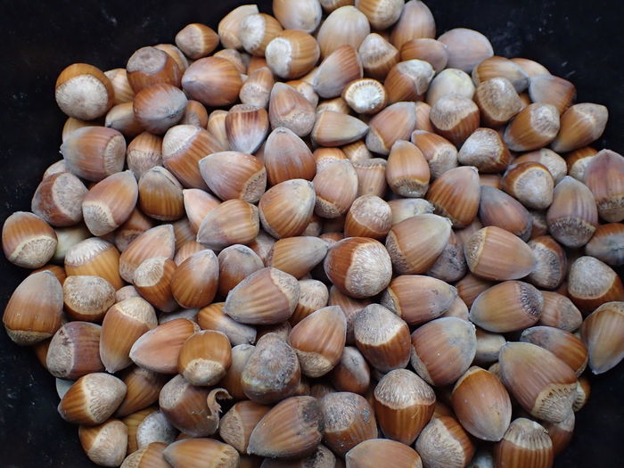 High angle view of chestnuts