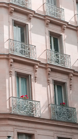 pinkish house Hot Pink Pelargonium Pink Color Light Pink Paris Balconies Windows Façade Sunlit Apartment Residential Building Façade Window Pastel Colored Business Finance And Industry House Architecture Building Exterior Built Structure Townhouse Row House Old Town TOWNSCAPE Classical Style The Past