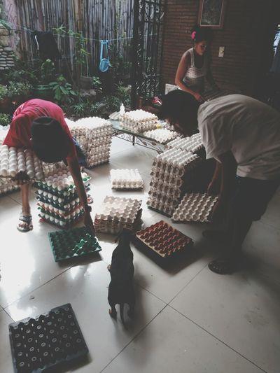 Fresh Eggs Work In Progress Philippines Cainta