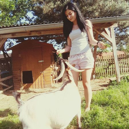 Goat Girl GermanGirl Outside Nature Village Greeneyes Myself Lipstick Madeingermany Snowwhite Beauty Taking Photos Model Blackhair Lady Enjoying Life Honey Sweety  Sexy Italiangirl Oftd POTD Let Your Hair Down Model Pose