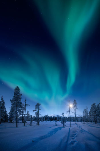 Low angle view of aurora borealis over snow covered landscape at night