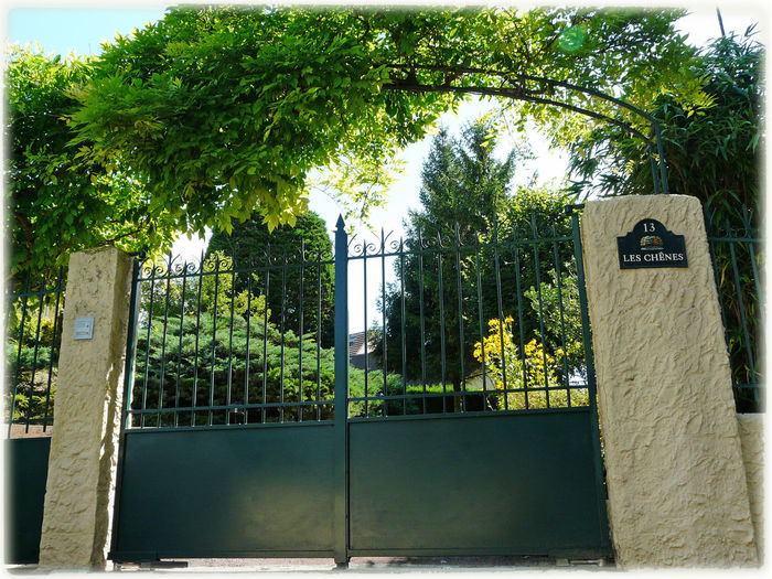 Happy spring for whose are becoming in the season. ✌ A Portal Gate With A Touch Of Nature Arch Of Vegetation Wisteria Trellis Green Bright Halo Green Theme Nature Theme Glycine Glycine On Gate Doors No People Unusual Angle Of Shot White Contour Frame In France