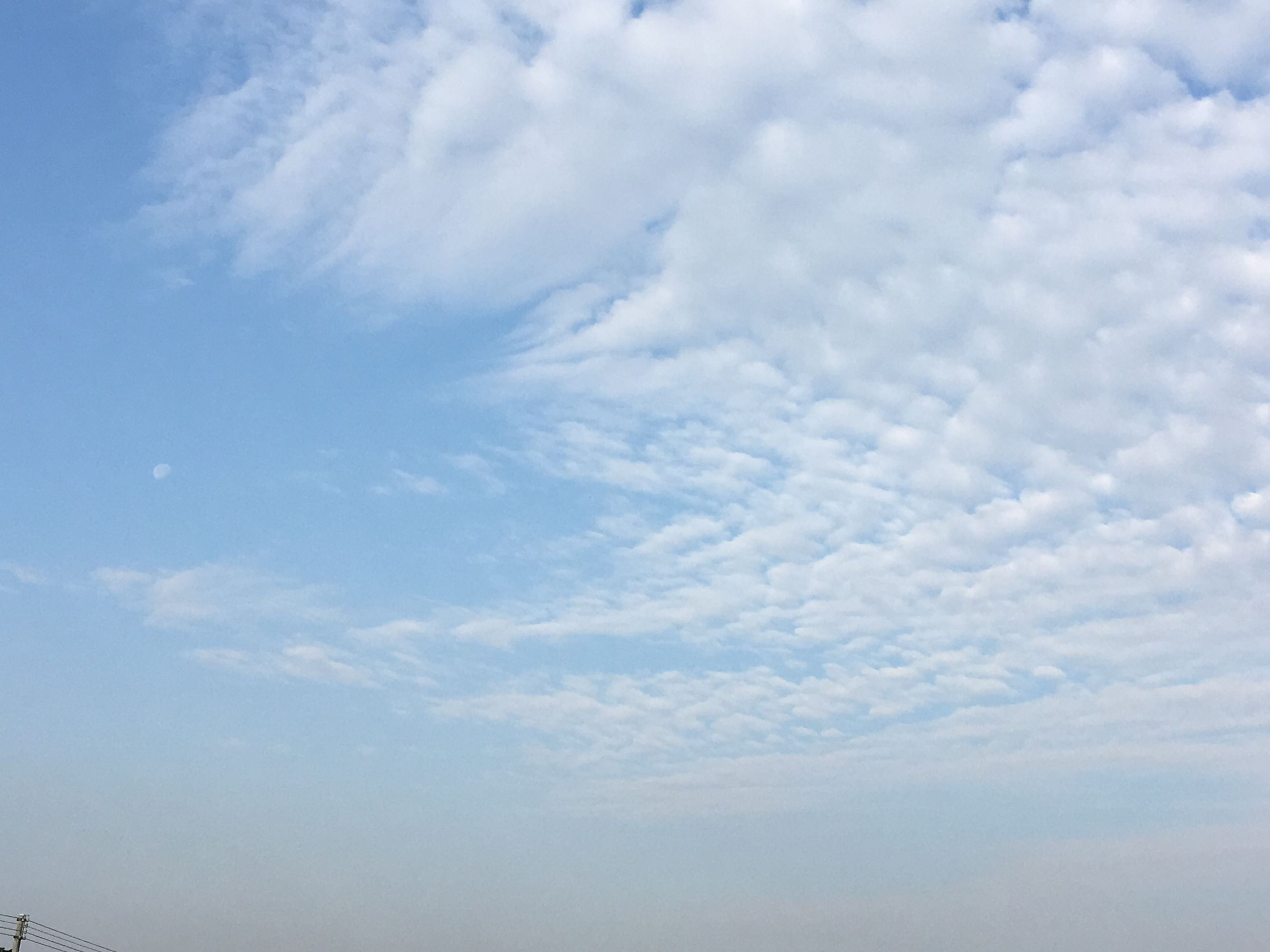nature, sky, low angle view, beauty in nature, tranquility, no people, scenics, day, outdoors, backgrounds