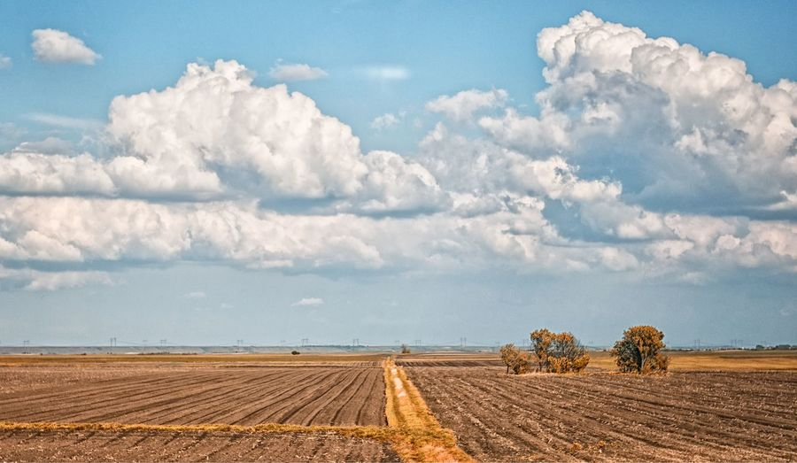 flat land Agriculture Cloud Cloud Cloud - Sky Cloudscape Distant Dramatic Sky Exploring Field Flat Land Horizon Over Land Landscape Landscape_Collection Novi Sad Outdoors Remote Serbia Sky Vojvodina