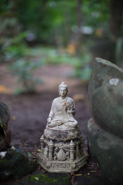 Bhuddha Art And Craft Belief Bhuddhism Carving Close-up Craft Creativity Day Focus On Foreground Human Representation Idol Male Likeness Nature No People Ornate Religion Representation Sculpture Selective Focus Solid Spirituality Statue Tree