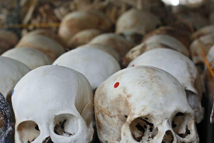 Close Up Of Human Skulls