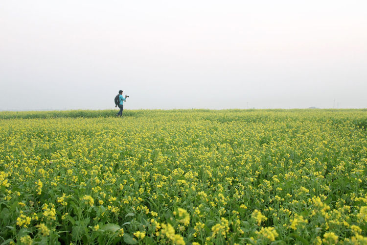 Mustard Fields Yellow Flower Adults Only Agriculture Beauty In Nature Crop  Day Farm Field Flower Freshness Growth Mustard Mustard Plant Nature Oilseed Rape One Person Outdoors People Photographer Rural Scene Scenics Side View Yellow