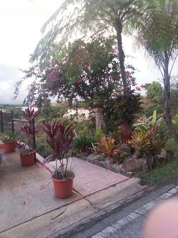 En El Campo Enjoy Life