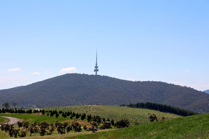 Black Metal Black Mountain Blue Canberra Clear Sky Copy Space Day Distant Environmental Conservation Exploring Famous Place Hill Landscape Mountain National Arboretum Non-urban Scene Outdoors Sky Telstra Tower Tourism Tranquil Scene Travel Destinations Traveling Vacation