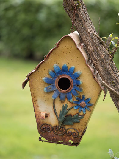 Bird House Animal Themes Bird Bird Houses Birds Close-up Day Focus On Foreground Grass Growth Hanging Metal Nature No People Outdoors Rusty Tree