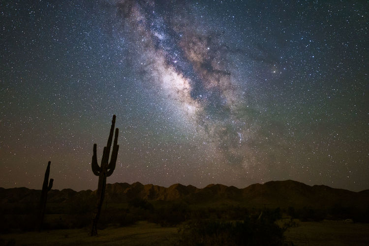 The Milky Way shines brightly in the night sky against the rugged Sonoran Desert landscape near Phoenix, Arizona. Arizona Desert Sonoran Desert Astronomy Beauty In Nature Galaxy Landscape Milky Way Milkyway Mountains Nature Night Non-urban Scene Outdoors Saguaro Saguaro Cactus Scenics - Nature Sky Space Star Star - Space Star Field Starry Sky Tranquil Scene Tranquility