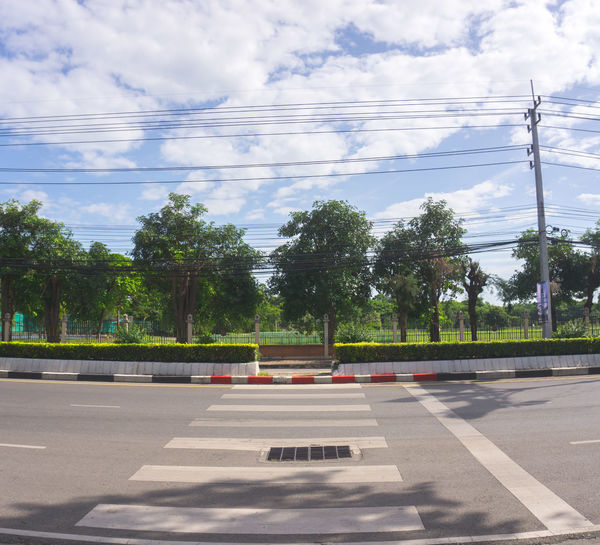Road by trees against sky in city