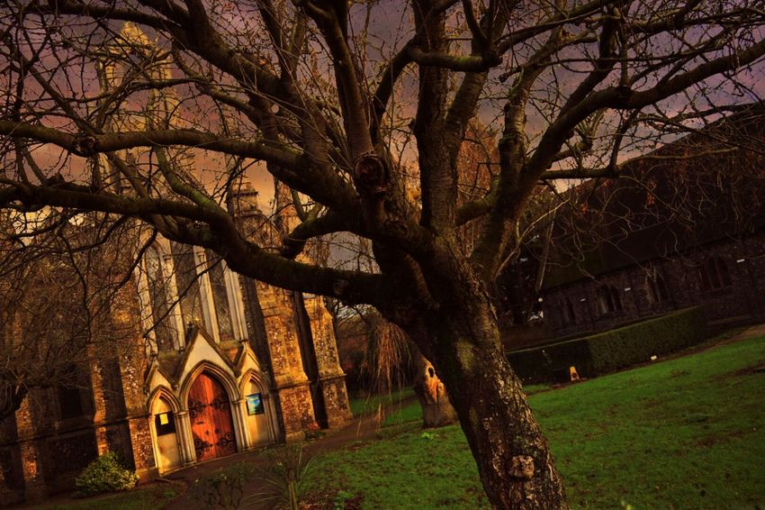 Churchporn Again More Spooky Church Graveyard.. Spooky Trees Taking Photos Norwich Showcase: January Tree_collection  Nikon D3300 My Edit Eye4photography  Feeling Creative EyeEm Best Shots - Trees