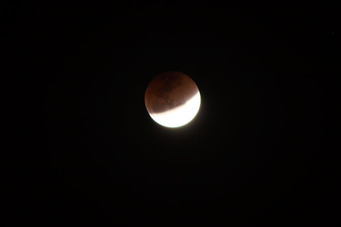 Super blood blue moon series - 4 of 8 Lunar Eclipse Astronomy Beauty In Nature Blood Moon Blue Moon Clear Sky Eclipse Low Angle View Moon Moon Surface Nature Night No People Outdoors Planetary Moon Scenics Sky Space Space Exploration Super Blood Blue Moon Super Moon Tranquil Scene Tranquility