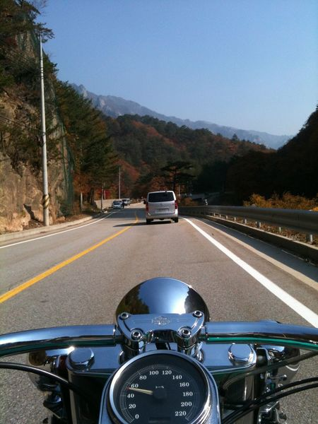 Harley Davidson Driving Fall