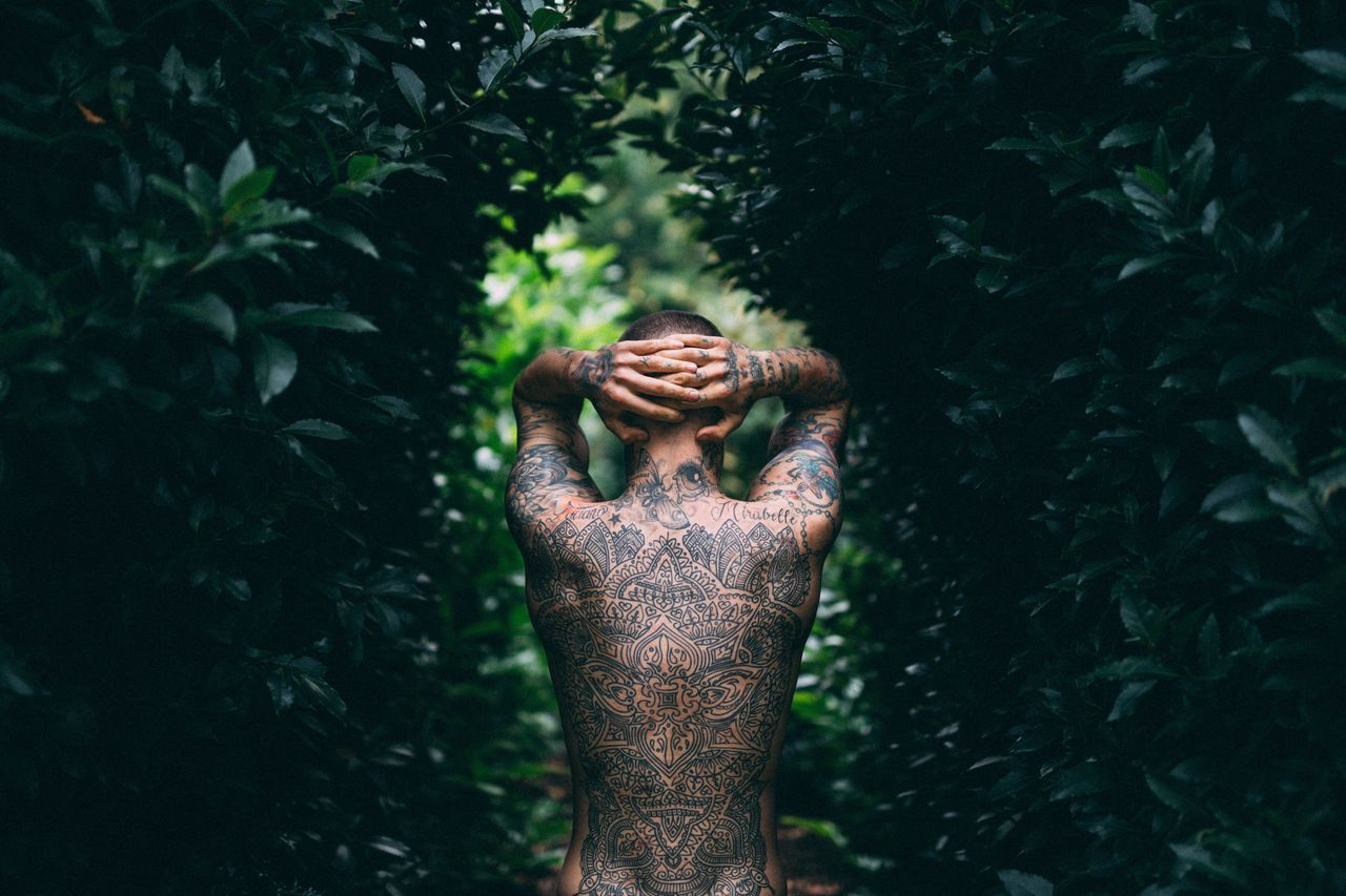Rear view of shirtless man with tattoo standing amidst plants in forest