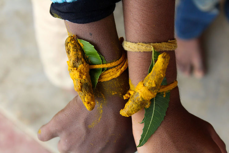 Turmeric root and neem leaf will tie on temple festival .