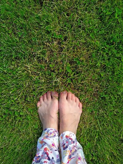 Bare female feet with short fingers on green grass