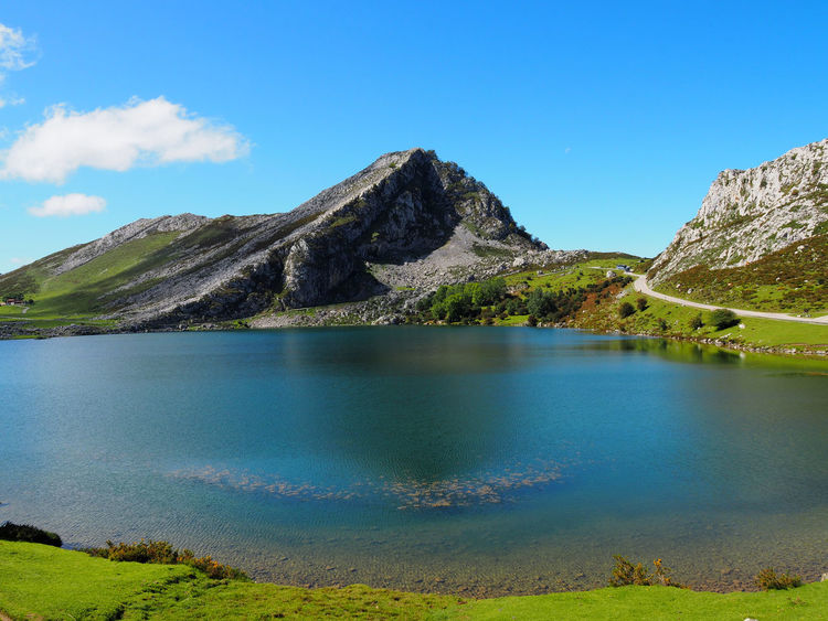 Landscape in Enol Lake in Lagos de Covadonga, Asturias - Spain Asturias Lagos De Covadonga Picos De Europa Beauty In Nature Blue Covadonga Enol Lake Green Color Hill Idyllic Lago Enol Lake Lakes  Land Landscape Mountain Mountain Peak Nature No People Outdoors Peak Picturesque Scenics - Nature Tranquil Scene Water