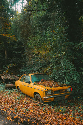 Car parked on field during autumn